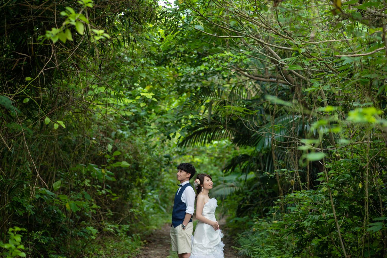 石垣島の森で撮影